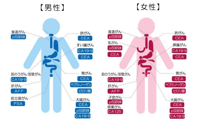 腫瘍マーカー検査